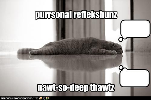 Personal Reflection Lolcat