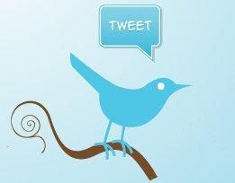 Twitter Logo from www.wpwizz.com